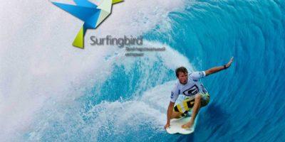 Россияне нашли способ, как получить доступ к заблокированному сайту Surfingbird